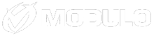 Modulo Security